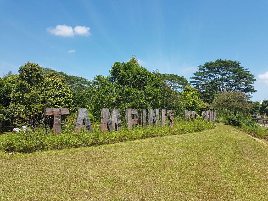 Tampines Eco Green Challenge